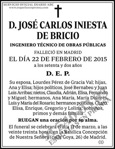 José Carlos Iniesta de Bricio